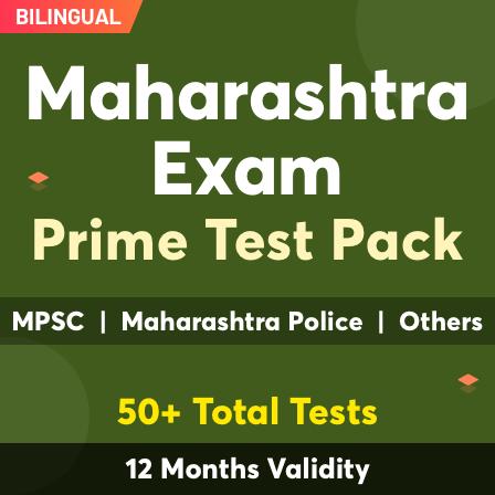 Competitive Exam Strategy-Introduction | स्पर्धात्मक परीक्षा धोरण-परिचय_60.1